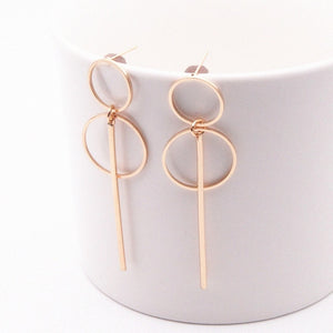 New Fashion Earrings Punk Simple Gold/ Silver / Long Section Tassel Pendant Size Circle Earrings For Ladies Gifts Wholesale