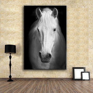 Wall Art Prints Fine Art Prints Wall painting White horse (2) Animal Picture For Living Room no frame