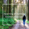 How long do bamboo toothbrushes last?