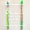 Why are Bamboo Toothbrushes Better Than Plastic?