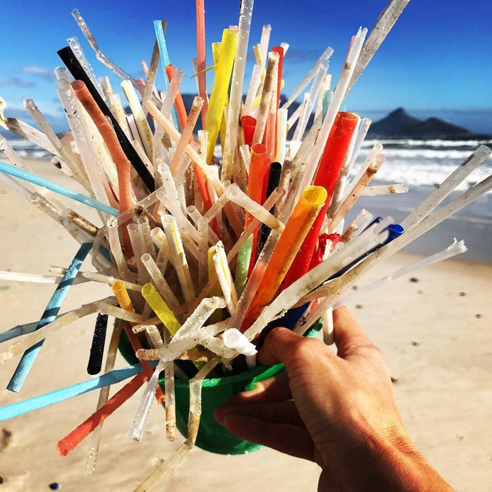 Plastic Straw Bans - Worth the Effort or All for Show?
