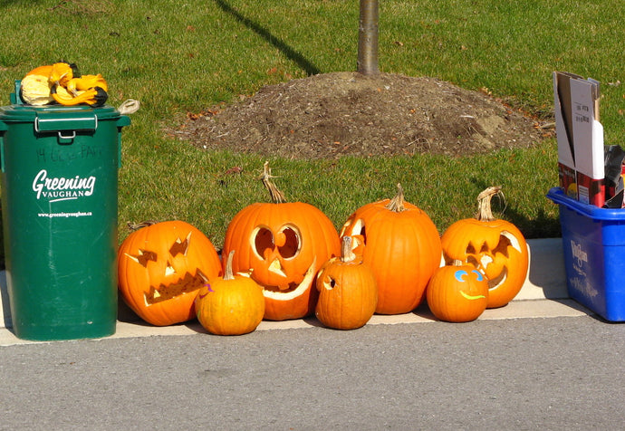Trick or Treat Part 5: How to Handle Halloween Waste
