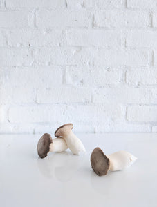 Mushrooms (Organic)