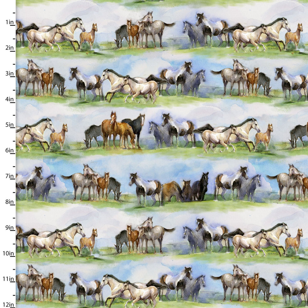 "Horses stripe 44"" digital fabric by 3 wishes, 16593-Mlt, Sunflower Stampede"