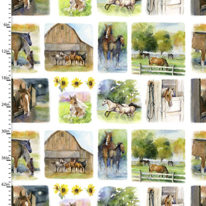 "Horses 24"" digital repeat by 3 wishes Panel,16597-wht, Sunflower Stampede"