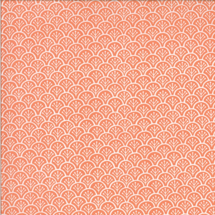 "Chantilly Clam Shells 44"" fabric by Moda, Fig Tree, 20344 11"