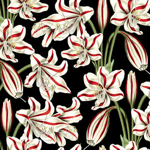 "Red and White Holiday Amaryllis 44"" fabric by Blank Quilting, Yuletide Botanica 1067-99 black"