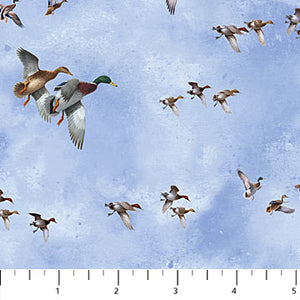 "Soaring Ducks - blue background 44"" fabric, Northcott, DP22737-42, Faithful Friends"