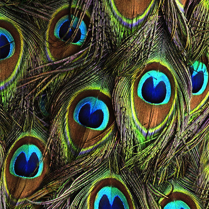 "Hoffman 44"" Fabric Peacock Q4513 Digital"