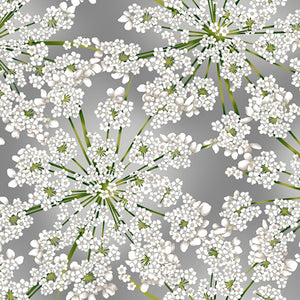 "Winter Blooms Grey/silver 44"" fabric by Hoffman,  R7676-48S"