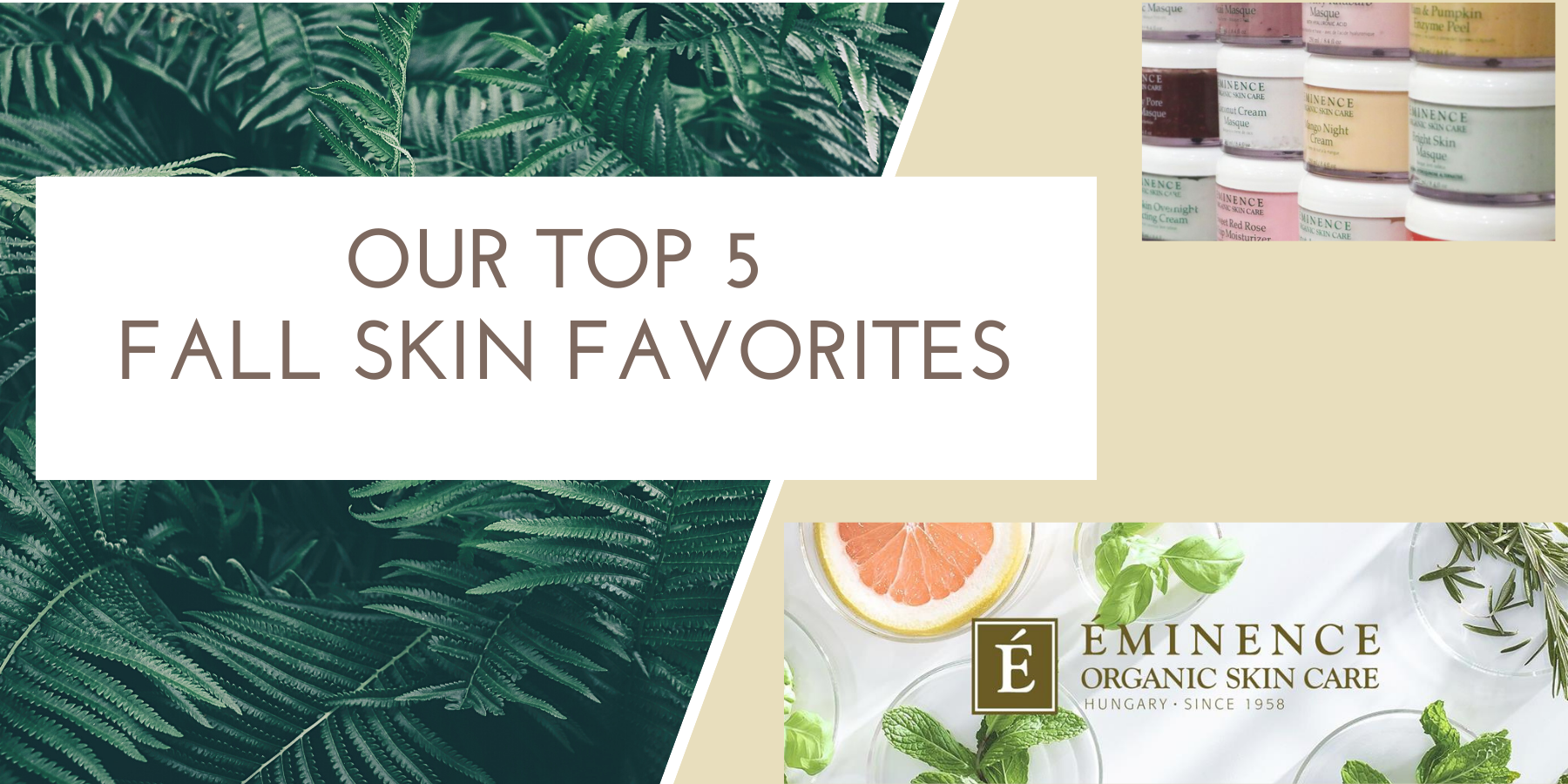 Our Top 5 Fall Skin Favorites by Eminence Organics