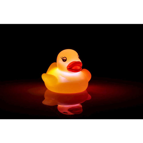 Flashing Floating Duck