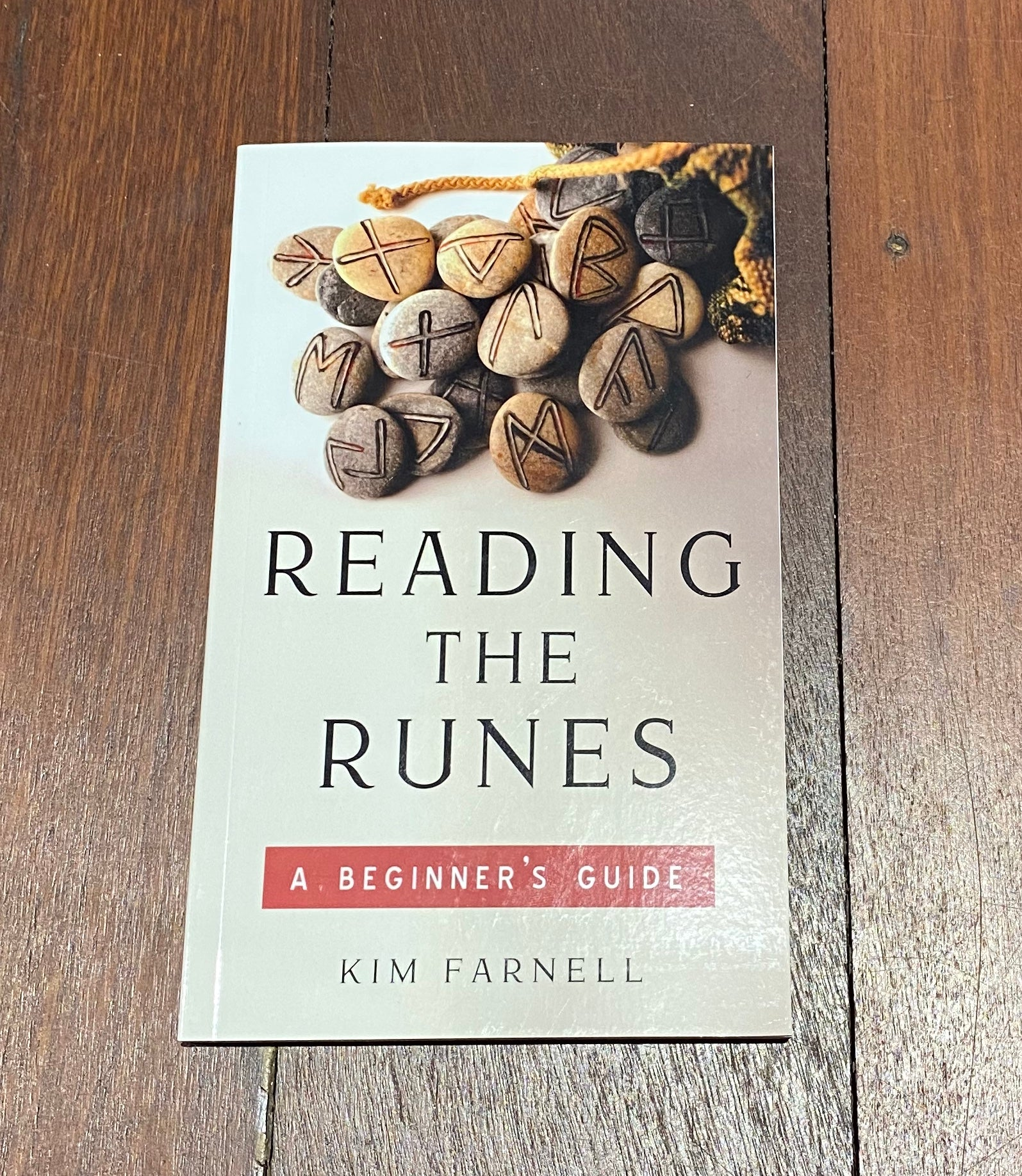Reading the Runes - book