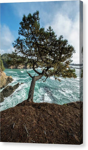 Mendocino Coast - Canvas Print