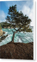 Load image into Gallery viewer, Mendocino Coast - Canvas Print