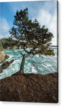 Load image into Gallery viewer, Mendocino Coast - Acrylic Print