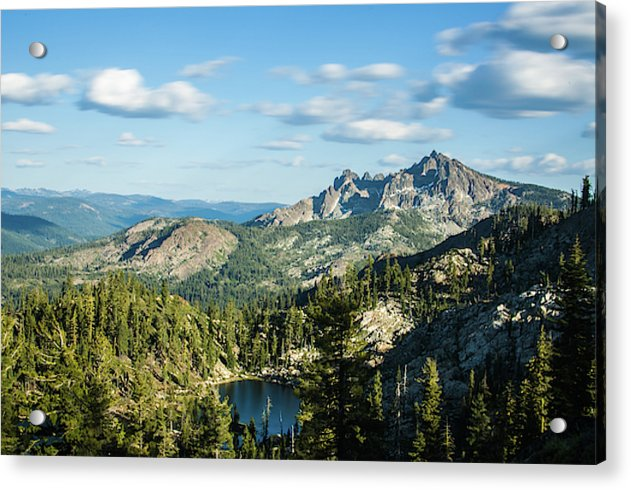 Deer Lake - Acrylic Print