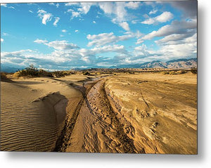 Jeep Trail - Metal Print