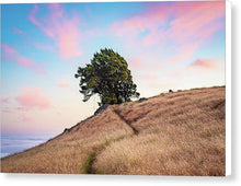 Load image into Gallery viewer, Sunset Swing - Canvas Print
