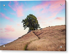 Load image into Gallery viewer, Sunset Swing - Acrylic Print