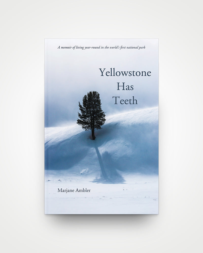 Yellowstone Has Teeth