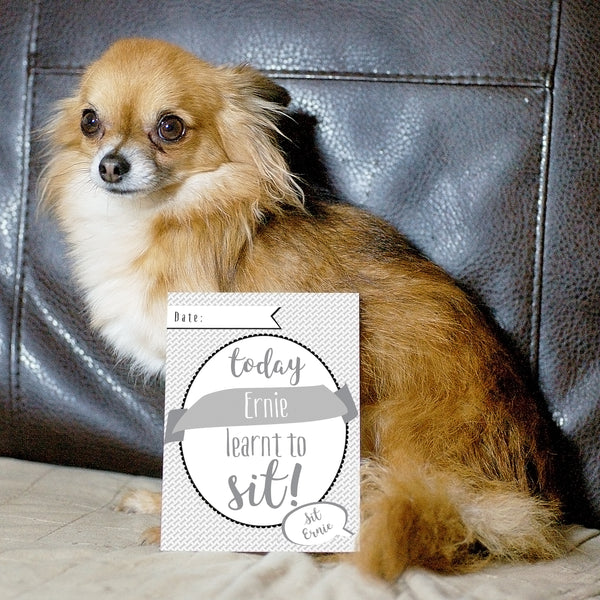 Personalised Puppy Cards: For Milestone Moments lifestyle image