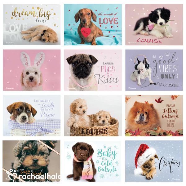 Personalised Rachael Hale 'The Cutest Dogs' A4 Wall Calendar lifestyle image