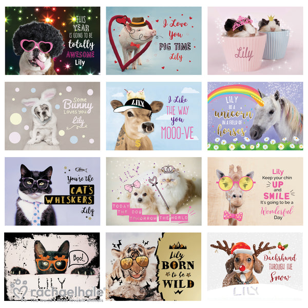 Personalised Rachael Hale Fun Animals A4 Wall Calendar lifestyle image