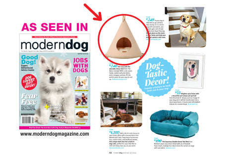 The Basic Concept featured on Modern Dog Magazine