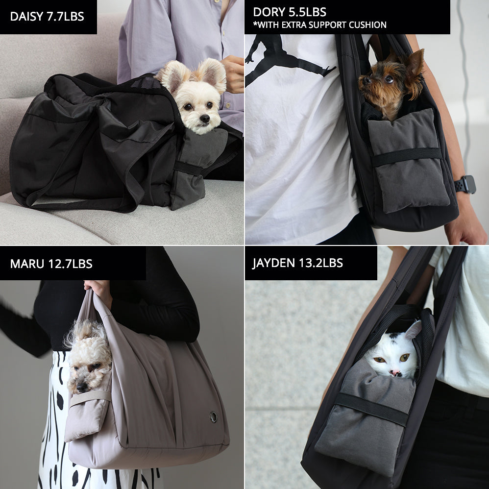 airline approved pet soft carrier