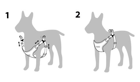 How to put on a easy walk dog harness in 3 easy steps