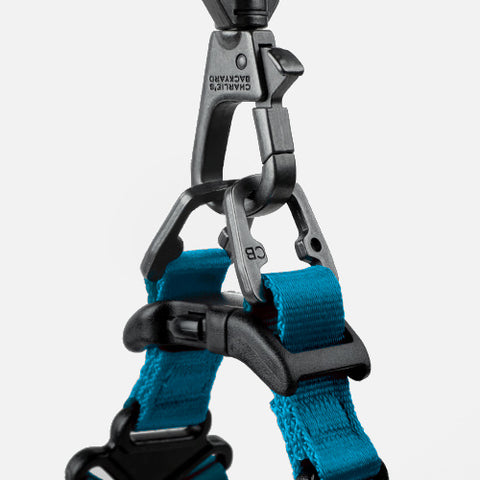 How to put on a easy walk puppy harness in 3 easy steps