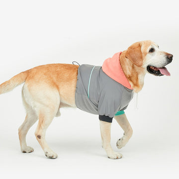golden retriever wearing AURORA XL Reflective Hoodie