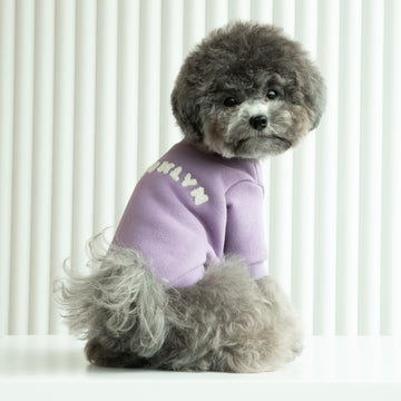 Silver toy poodle wearing Brooklyn in Soft Violet