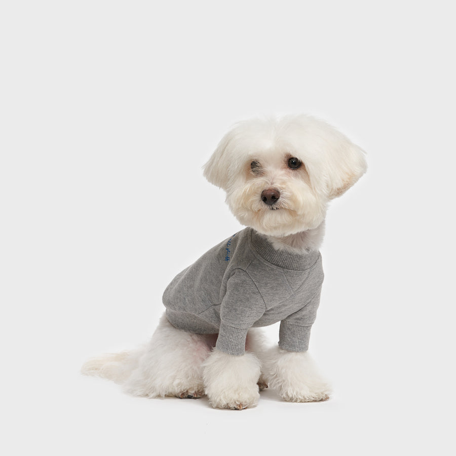 dog wearing Crew Neck Sweatshirt