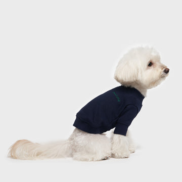Crew Neck Dog Sweatshirt for small dogs