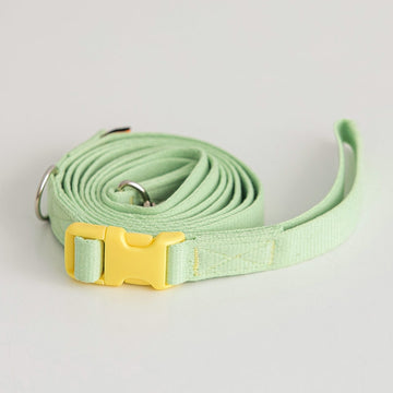 Candy Crayon Leash light green