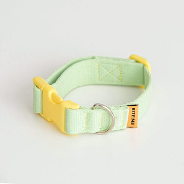 Candy Crayon Dog Collar in light-green