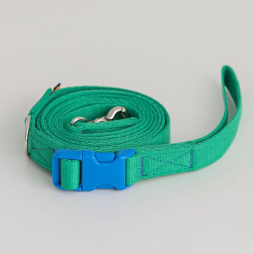 Candy Crayon Leash green