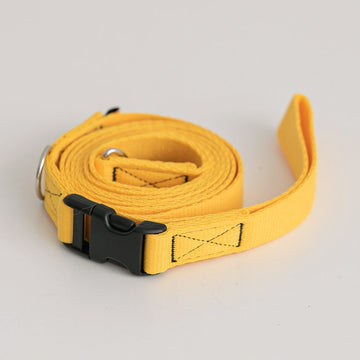 Candy Crayon Leash yellow