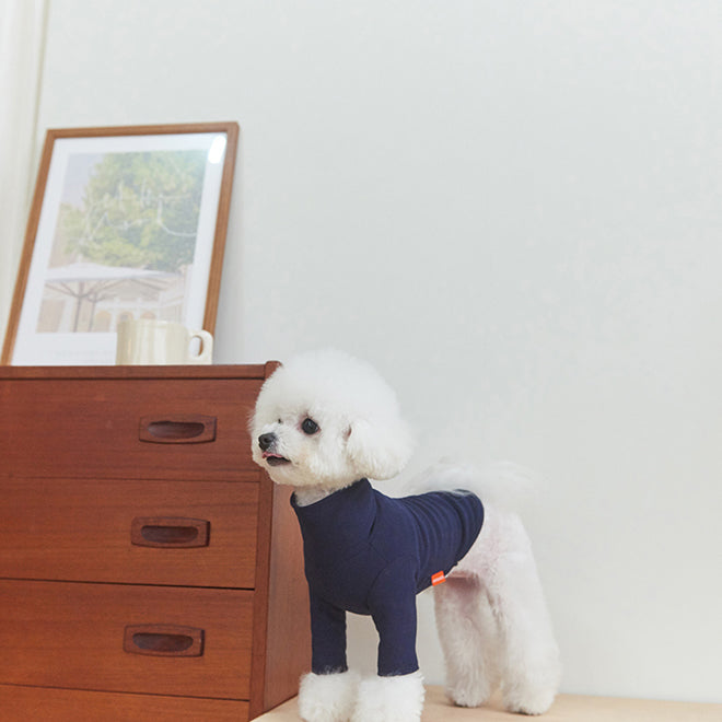 White dog wearing Basic turtleneck Colle Polo for dogs in navy indigo