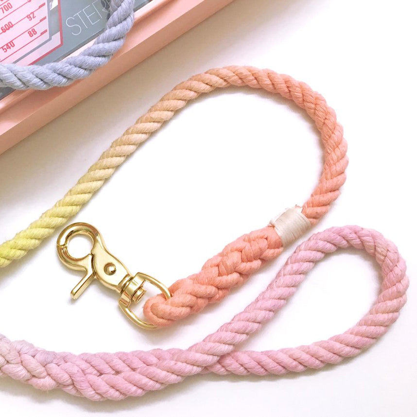 Notyers Sorbet rope style Leash