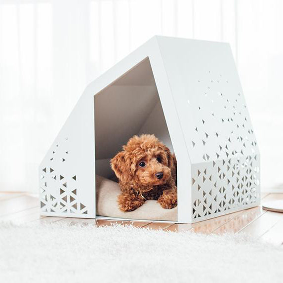 Steel & Powder Coated White Modern Dog House