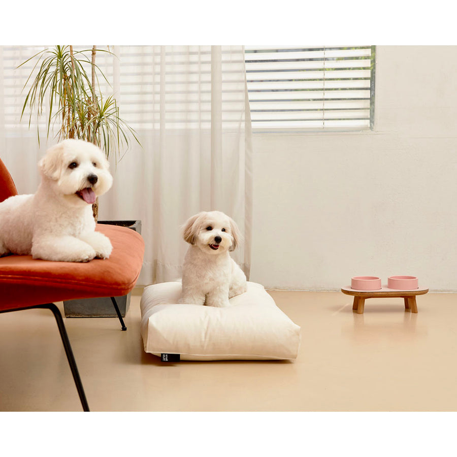dogs happy with minimalist microfiber simple dog cushion