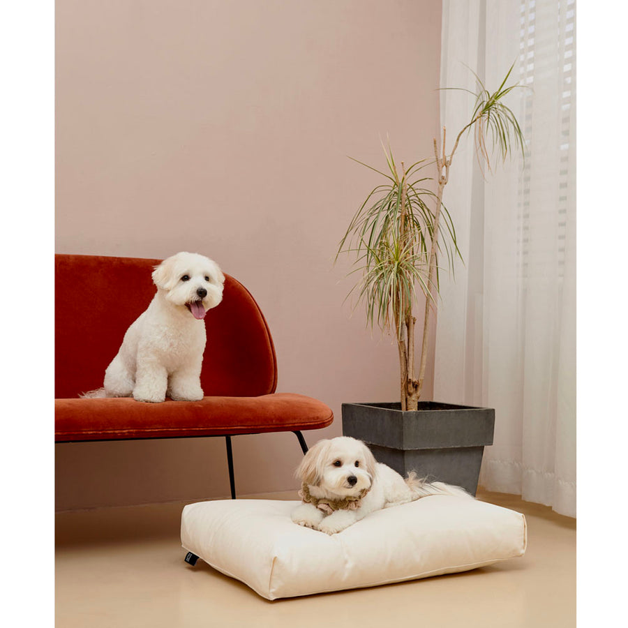 happy dogs sitting on minimalist microfiber simple dog cushion