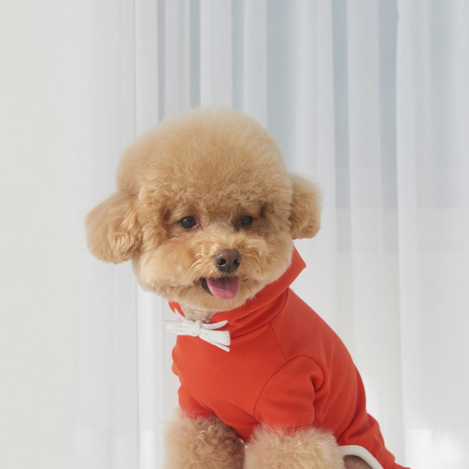 dog wearing onesies in red and yellow