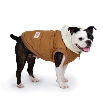 Charlie's Backyard Urban Hooded Dog Jacket in Brown