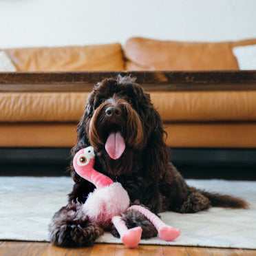 Flora the Flamingo dog toy