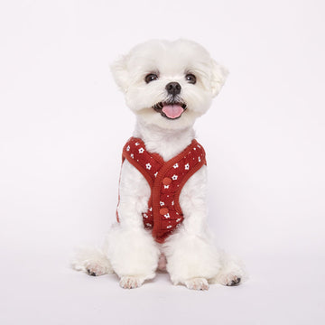 Maltese wearing Flower Padded winter vest