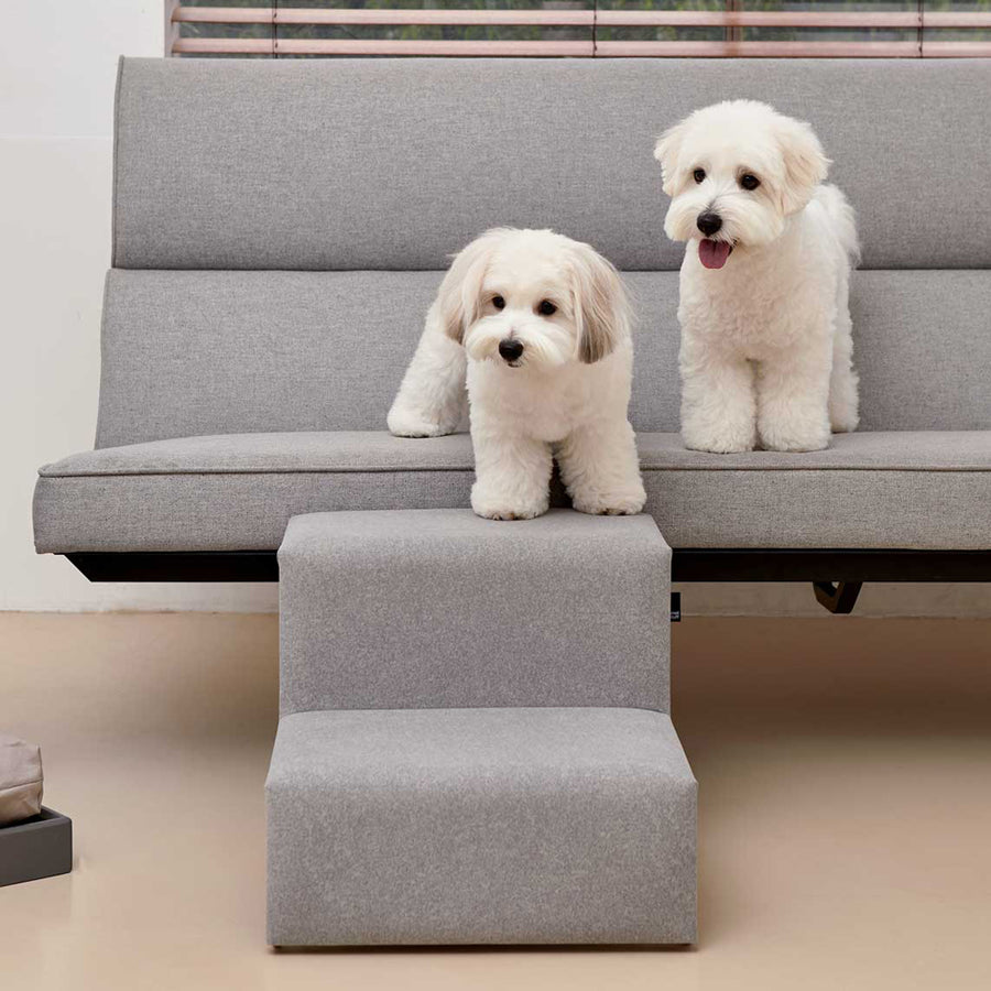 two dogs with Smallstuff pet stairs in light gray